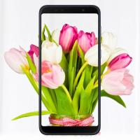 Мобильный телефон ASUS ZenFone Max Pro (M1) ZB602KL 3/32 GB Silver Фото
