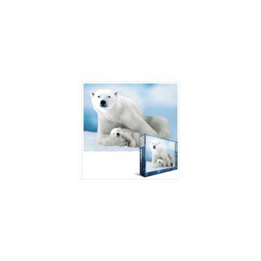 Пазл Eurographics Белая медведица с медвежонком Фото
