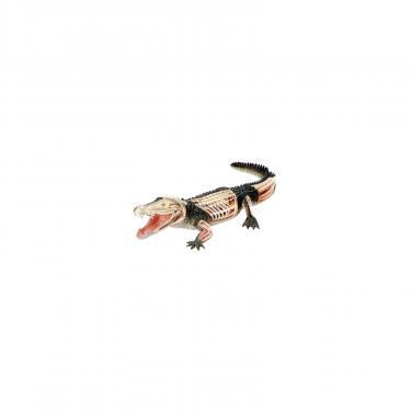 Пазл 4D Master Крокодил Фото