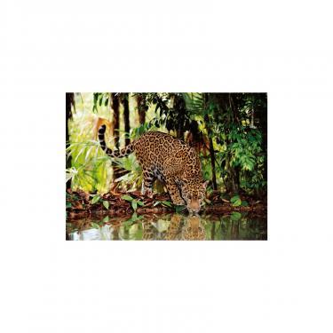 Пазл Clementoni Леопард 2000 элементов Фото 1