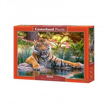 Пазл Castorland Суматранский тигр Фото